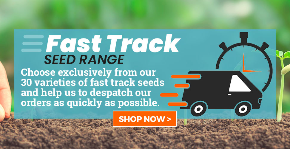 View Our Fast Track Seed Range