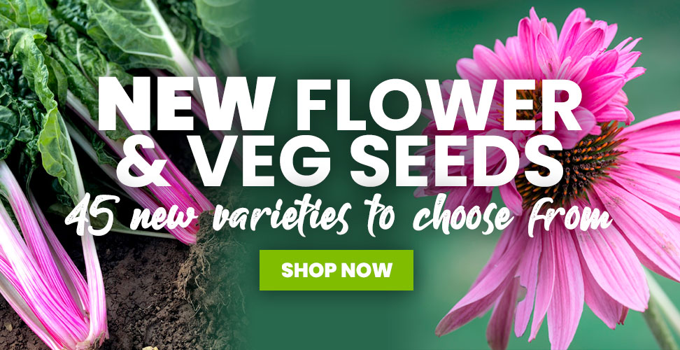 View Our New 2021 Seed Varieties